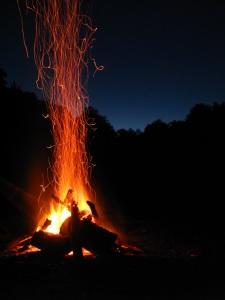 fire-1873169